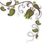 Vintage floral border. Decoration with vintage floral olive border Royalty Free Stock Photography