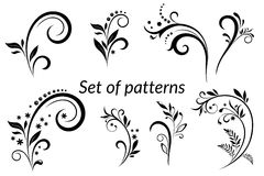 Vintage Floral Calligraphic Patterns Stock Image