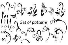 Vintage Floral Calligraphic Patterns Stock Photo