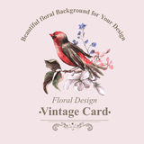 Vintage Floral Card with Bird on Branch Stock Photography