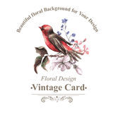 Vintage Floral Card with Bird on Branch Royalty Free Stock Image