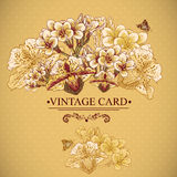Vintage Floral Card with Exotic Flowers. Royalty Free Stock Photo