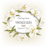 Vintage floral card with a frame of white lilies. Royalty Free Stock Photography