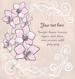 Vintage floral card with orchid Royalty Free Stock Photography