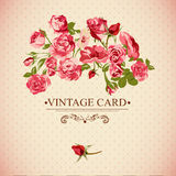 Vintage Floral Card with Roses Stock Image