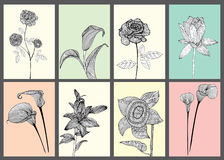 Vintage Floral Cards Set. Royalty Free Stock Photos