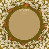 Vintage floral circular frame Stock Images