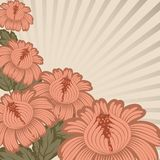 Vintage floral design. Stock Photography