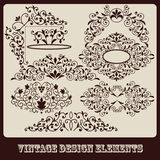 Vintage floral design elements Royalty Free Stock Photo