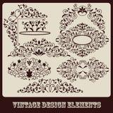 Vintage floral design elements Royalty Free Stock Photo