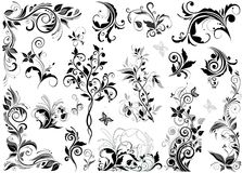 Vintage floral design elements Stock Photos
