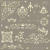 Vintage floral  design elements Royalty Free Stock Image