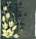 Vintage floral frame Royalty Free Stock Photo