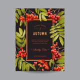 Vintage Floral Frame - Autumn Rowan Berries - for Invitation Stock Photo