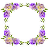 Vintage floral frame from corners with purple eustoma flowers. Vintage floral frame from  corners with purple eustoma flowers, buds and leaves isolated on a Stock Images
