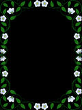 Vintage floral frame. Decorative pattern Royalty Free Stock Images