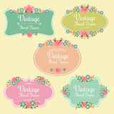 Vintage Floral Frame. Several badge or frame in floral theme Royalty Free Stock Image