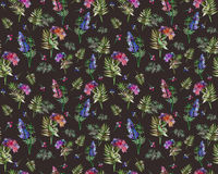Vintage floral herbs seamless pattern with forest flowers and leaf. Print for textile wallpaper endless. Hand-drawn Royalty Free Stock Photos