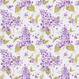 Vintage Floral Lilac Background Royalty Free Stock Photo