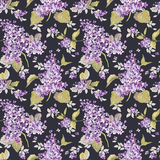 Vintage Floral Lilac Background Stock Image