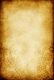 Vintage floral ornament background. Royalty Free Stock Image