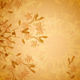 Vintage floral ornament Stock Image