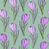 Vintage floral pattern with beautiful flowers. Vector seamless pattern for textile or ceramic design Stock Photo