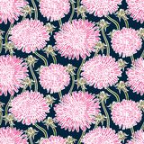 Vintage floral pattern with dandelions or asters. Royalty Free Stock Images