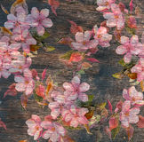 Vintage floral pattern - pink flowers, old wood texture. Watercolor Stock Images