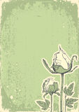 Vintage floral postacardfor design. Stock Photography