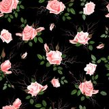 Vintage Floral Seamless Background with Blooming pink Roses, Vector Illustration Stock Photo