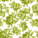 Vintage floral seamless greenery monochrome pattern with flowering peonies, on white background. Watercolor hand drawn painting il Stock Photo