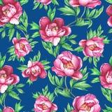 Vintage floral seamless pattern with flowering pink peonies, on dark blue background. Stock Images