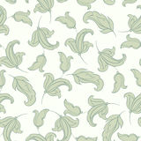 Vintage floral seamless pattern. Retro vector background Royalty Free Stock Photos