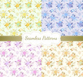 Vintage floral seamless pattern set. Vector illustration Royalty Free Stock Photos