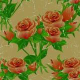 Vintage floral sem emenda teste padrão envelhecido com rosas ilustração royalty free