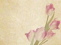 Vintage floral with space for text. EPS 10 Stock Photos