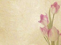 Vintage floral with space for text. EPS 10 Stock Photo