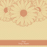 Vintage floral template. Daisies. Vector background with linear fllowers illustration Stock Photo