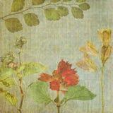 Vintage floral texture background.jpg Stock Photo