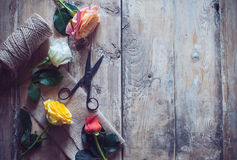 Vintage floristic background Royalty Free Stock Images