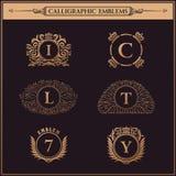 Vintage flourishes elements. Calligraphic ornaments set. Luxury logos monogram. Vintage royal flourishes elements. Calligraphic symbol ornament. Letter in frame royalty free illustration