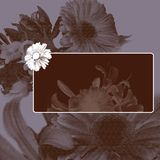 Vintage flower background Royalty Free Stock Photos