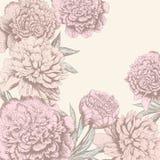 Vintage flower background vector illustration