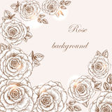 Rose background 1 Royalty Free Stock Images