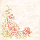 Vintage flower background Stock Photo