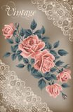Vintage flower card with roses Stock Images