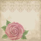 Vintage flower card with roses Royalty Free Stock Image