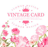 Vintage Flower Card. Vector Illustration Stock Photography