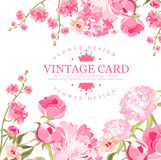 Vintage Flower Card. Vector Illustration Royalty Free Stock Images